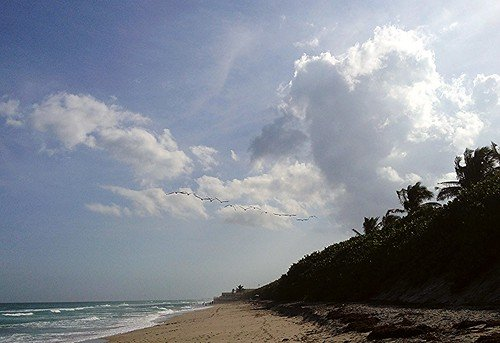Carlin Park: Located at 400 South State Road A1A, Jupiter, this tourist spot is famous for its highly-advanced oceanfront.