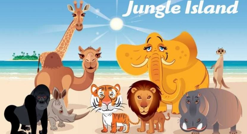 On the Jungle Island Beach, you will find a fantastic activity for the whole family.