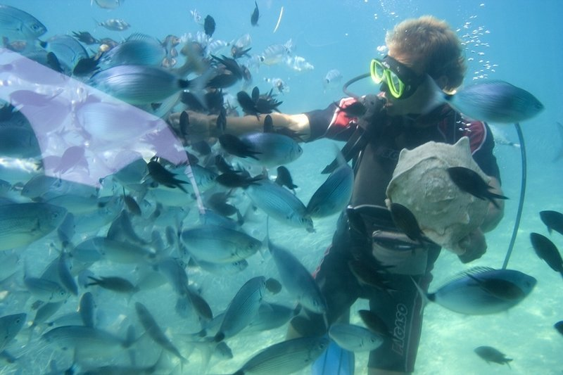 Scuba Diving in the warm, calm waters of the Bahamas is a pleasure. Many divers are amazed to see the sunken Spanish ships, beautiful corals and schools of friendly tropical fish.