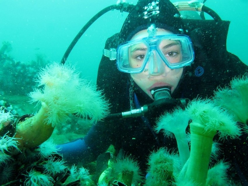 There are basically 3 different ways to keep your scuba dive mask from fogging while you are diving.