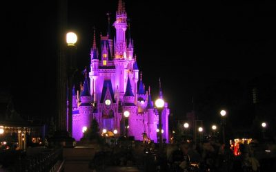 There are plenty of new things to see at the Orlando theme parks, so now is the time to plan your next visit there. And if you have never been to Disney World and other Orlando venues, then what are you waiting for?