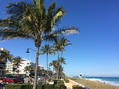 "If you want to see yachts, mansions and millionaires then set sail for Palm Beach, Florida. This is where you can go if you want a glimpse of the lifestyles of the really ""rich and famous""."