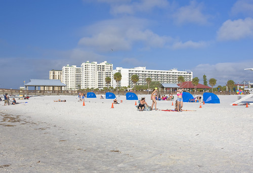 Clearwater Beach, Florida. Dog Racing- Go watch the greyhound's race at Derby Lane. This is a great place to go for a little evening entertainment. They offer live wagers as well as internet wagers. Who know you may just make a little cash while you are there.