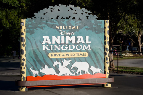 Animal Kingdom. Orlando Vacation Packages.