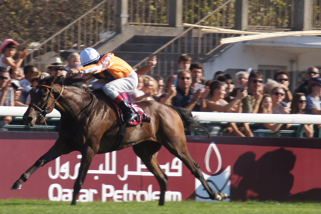 Prix de L'Arc de Triomphe. These days the race does not attract the same State sponsorships of the past but has been replaced by prestigious sponsors
