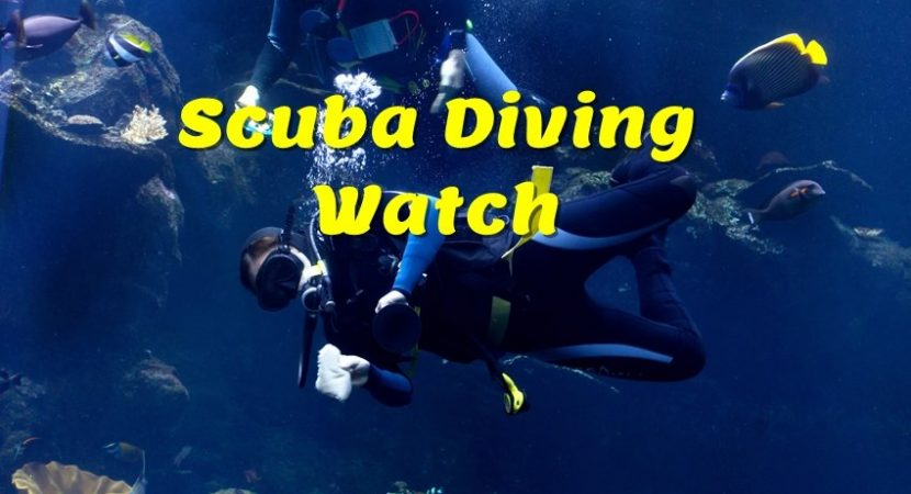Scuba Diving Watch Computer. If Scuba diving is more than just a hobby, sooner or later you'll need to get a real dive watch.