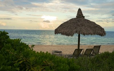 The islands of Captiva and Sanibel offer you a dream vacation and fulfill your dreams of a getaway island.