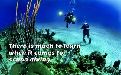 Scuba diving is one of the most well known and loved sports in the world, and not only is it incredibly fun and enjoyable but as well educational.