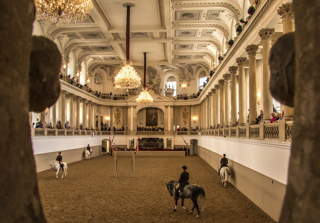 The Spanish Riding School also has a museum. The Lipizzaner Museum gives visitors a chance to observe and learn about Vienna's world famous white horses