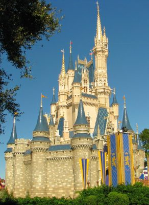 Many families find that the Orlando area offers many more activities, and there are many different theme parks and resorts in this area.